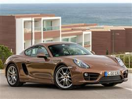 2014 Porsche Cayman Base 2dr Rear-wheel Drive Coupe