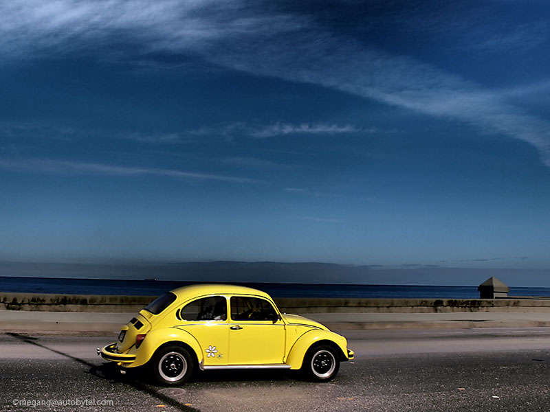 The Complete Beetle: A Photo History of the Volkswagen Beetle