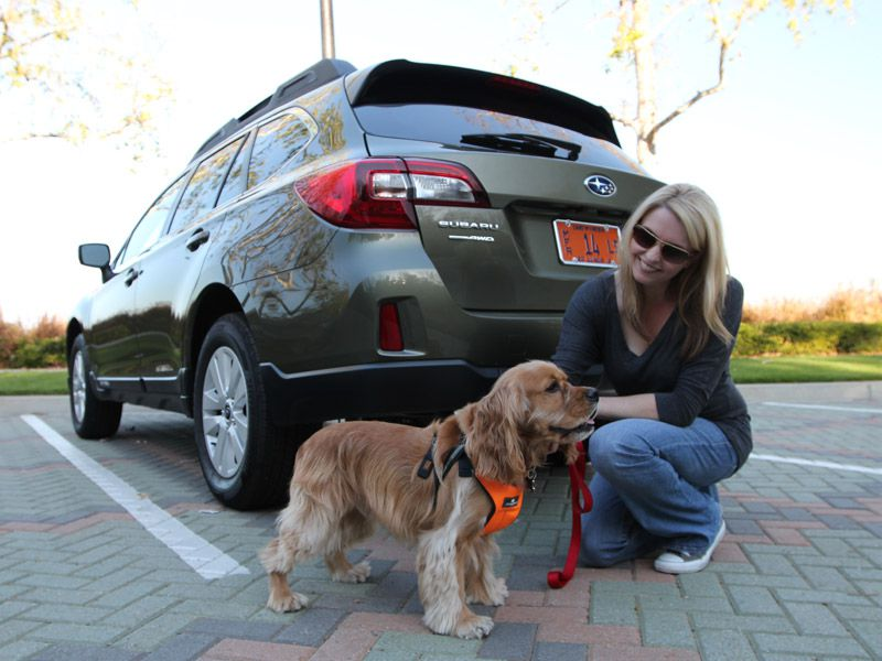 Crash Tested Dog Seat Belts Carriers Crates And Pet Seats That Failed Major Crash Test Studies