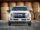 2017 Ford F450 Platinum grille