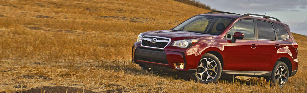 The 2014 Subaru Forester is completely redesigned and ready to go just about anywhere!