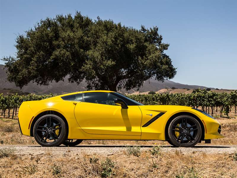 Amazing Chevrolet Corvette Stingray