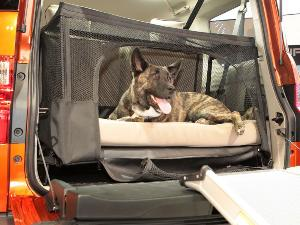The 10 Best Cars for Dogs