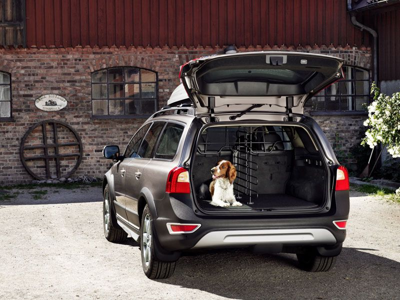 Best Suv For Large Dogs