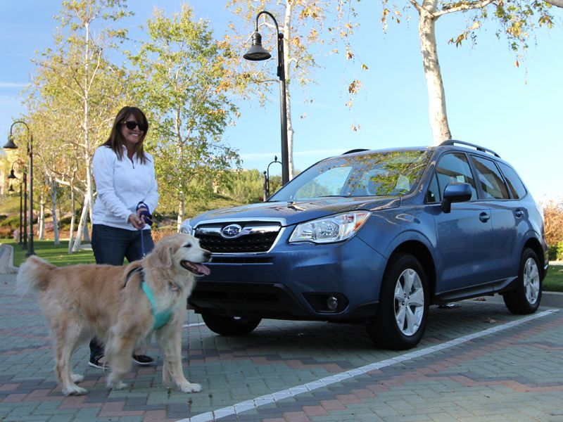 The 10 Best Cars for Dogs  0a1e21054