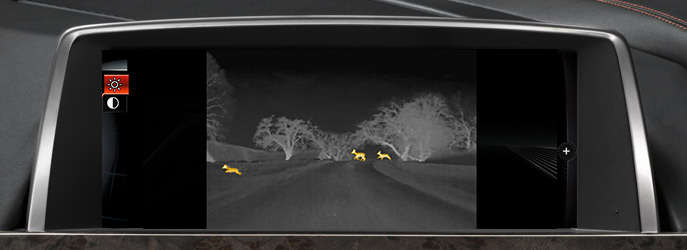 What Is BMW Night Vision?