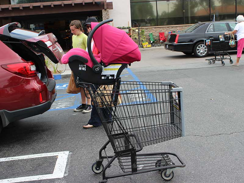 5 Safe Alternatives To Putting A Car Seat On Top Of The Shopping Cart