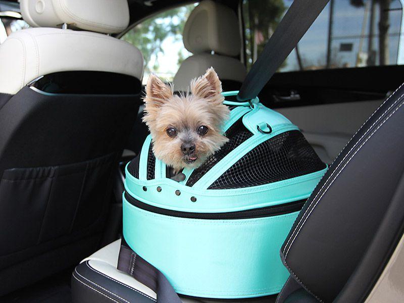 Harleycropped on Dog Car Harness Seat Belt