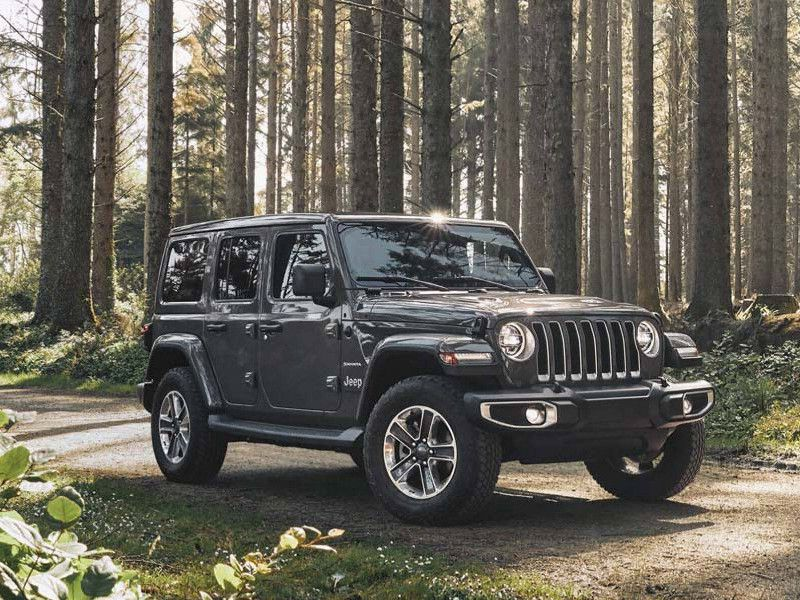 2020 Jeep Wrangler gray in woods