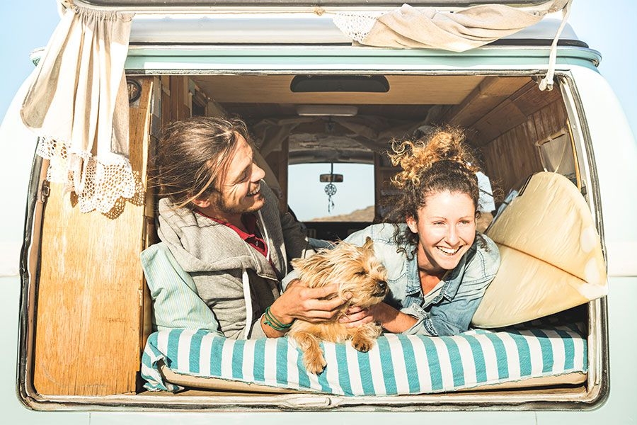 What is the #Vanlife Movement?
