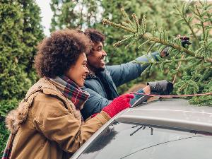 10 Best Vehicles for Hauling a Christmas Tree